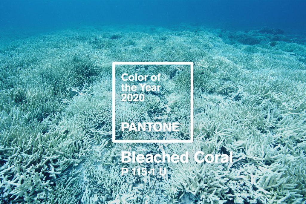 Az év színe a belsőépítészetben 2020