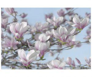 Magnolia Fotótapéta 254x368 cm