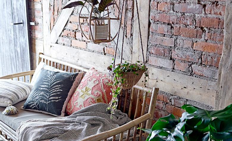 Cserepes levendula: Hogyan gondozd és dekoráld vele a lakást